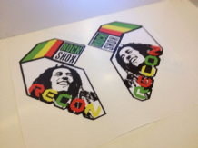 Rock Shox Recon (bob marley tribute) Decals